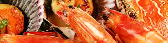 Mooloolaba Seafood Cruise 3
