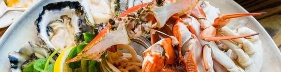 Mooloolaba Seafood Cruise 6