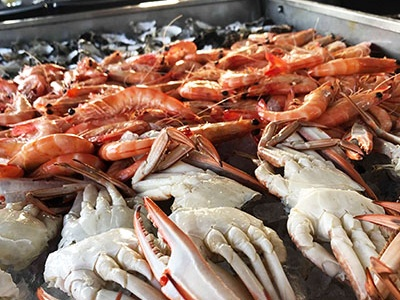 Saturday Seafood Buffet Mooloolaba